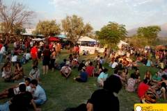 bierfest-santiago- 2013-3