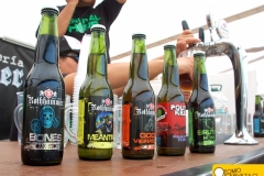 bierfest-santiago- 2013-8