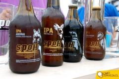 bierfest-santiago-2015-1