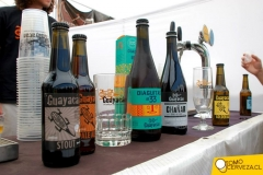 bierfest-santiago-2015-2