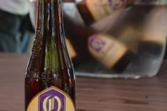 lanzamiento-guia-de-la-cerveza-en chile-2013-11