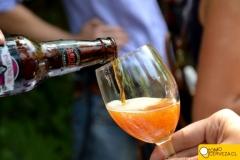 lanzamiento-guia-de-la-cerveza-en chile-2013-19