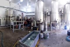 visita-cerveceria-principal-13